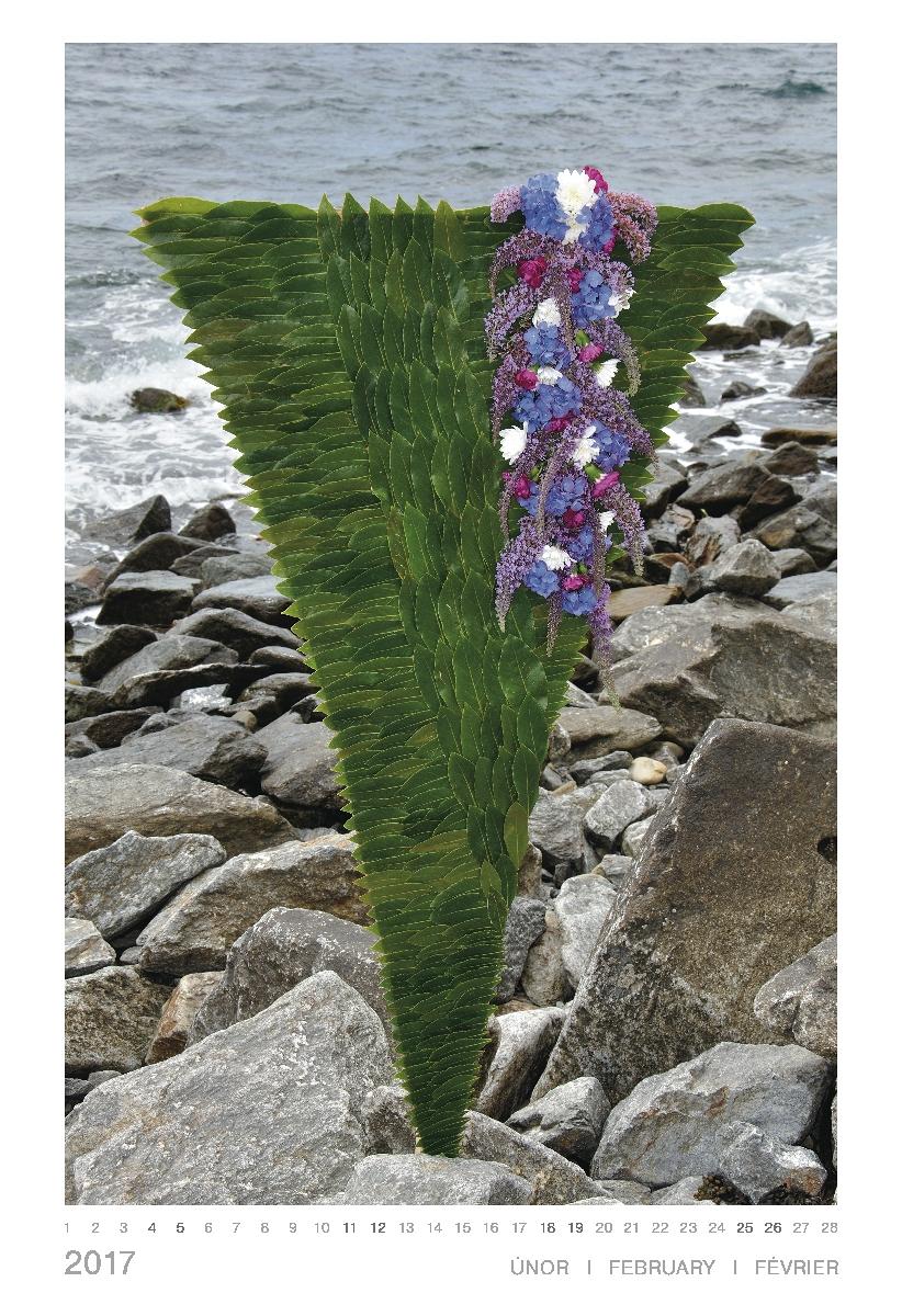 Kalendář 2017 Květy a moře (Helena Prošková) v ceně je započítáno poštovné